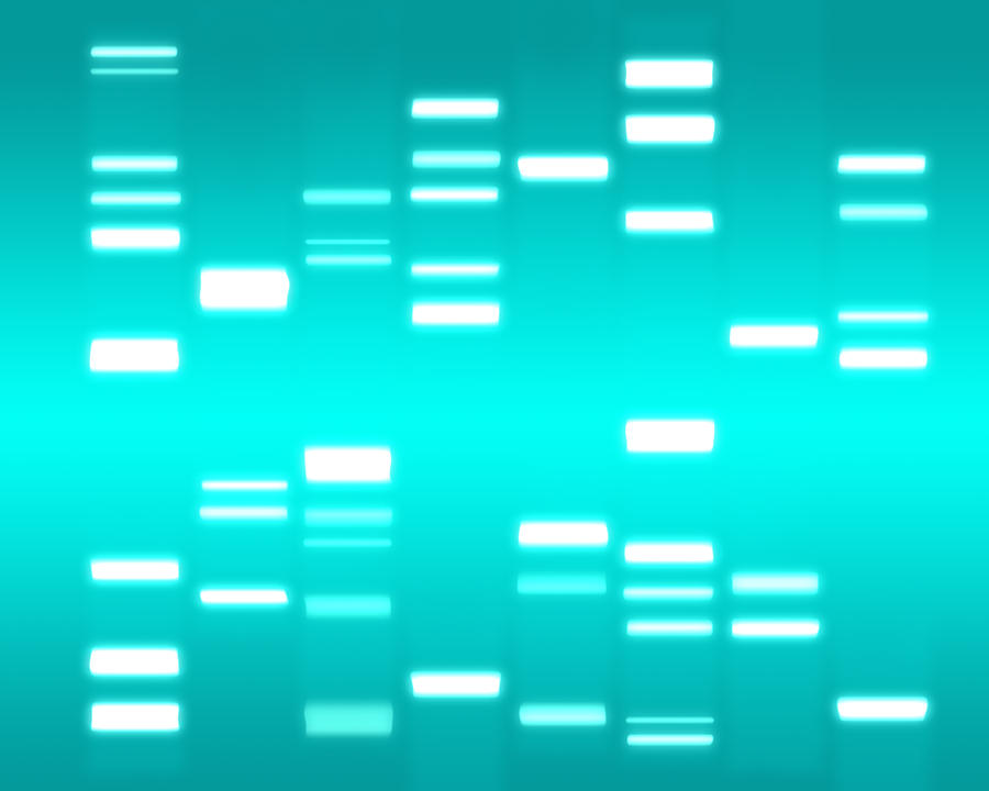 Dna Cyan Digital Art