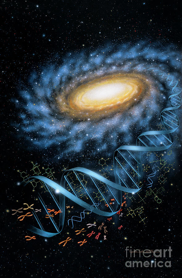 Dna Galaxy Painting  - Dna Galaxy Fine Art Print