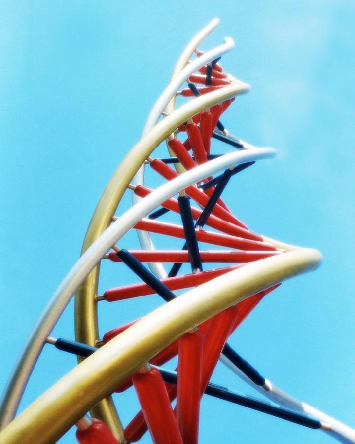 Dna Sculpture Photograph