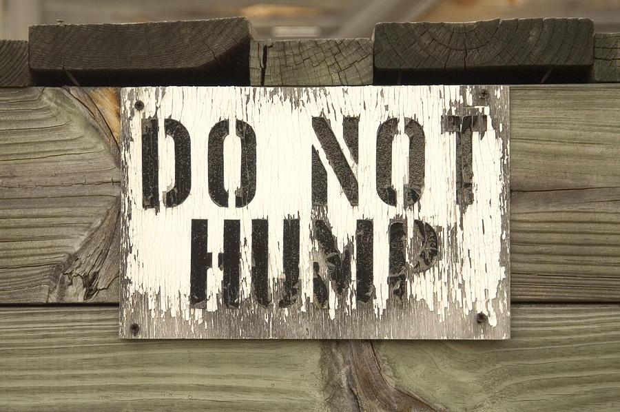 Do Not Hump Sign Photograph - Do Not Hump by Mike McGlothlen