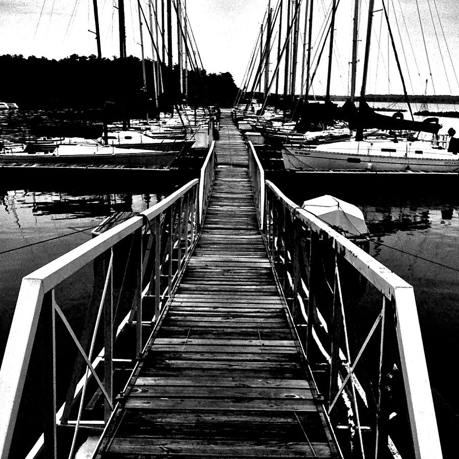 Dock And Sailboats Photograph