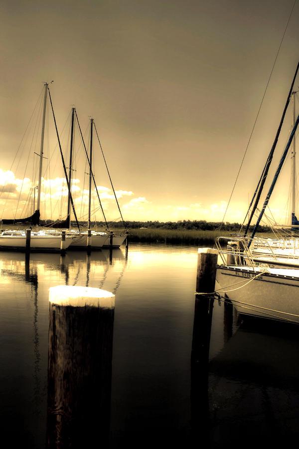 Dog River Marina Photograph