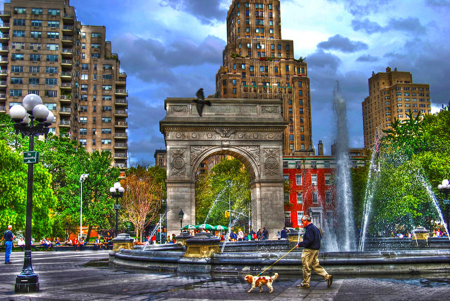 Dog Walking At Washington Square Park Photograph  - Dog Walking At Washington Square Park Fine Art Print