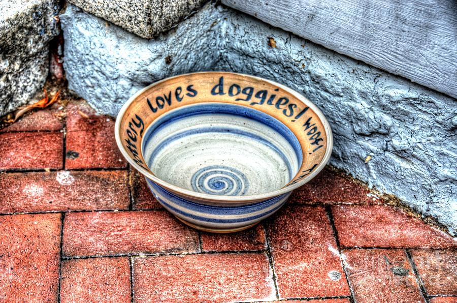 Doggie Dish Photograph