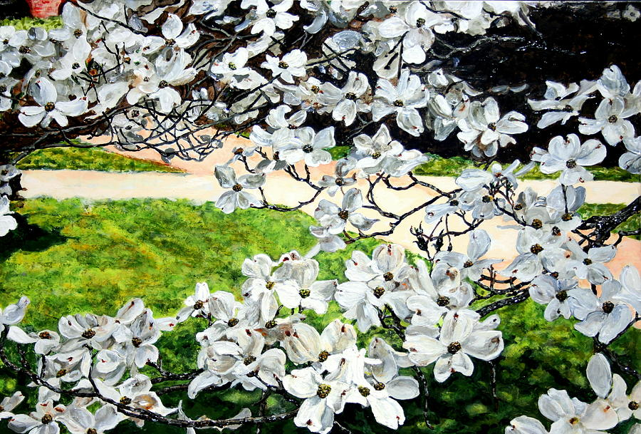 Dogwood Blooms In A Virginia Church Yard Painting  - Dogwood Blooms In A Virginia Church Yard Fine Art Print