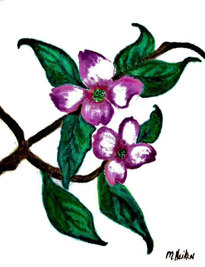 Dogwood Favorite Digital Art