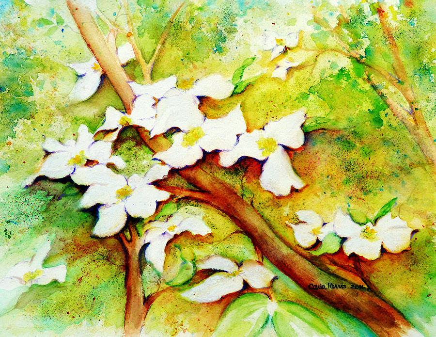 Dogwood Painting - Dogwood Flowers by Carla Parris