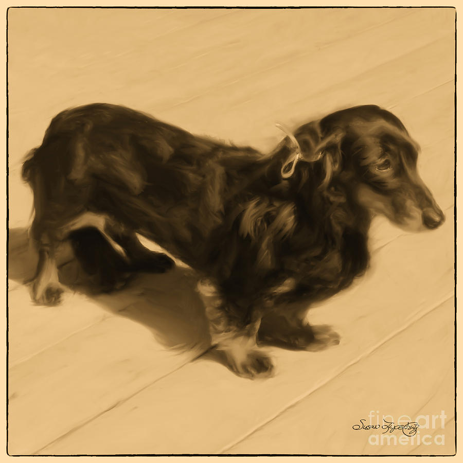 Dolled Up Dachshund 2 Digital Art  - Dolled Up Dachshund 2 Fine Art Print