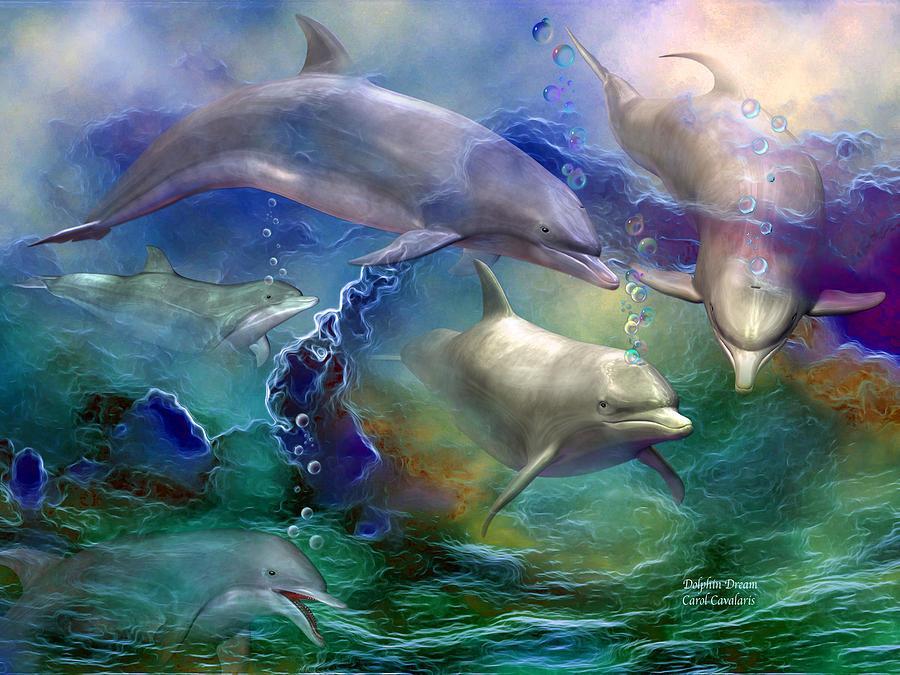 Dolphin Dream Mixed Media  - Dolphin Dream Fine Art Print