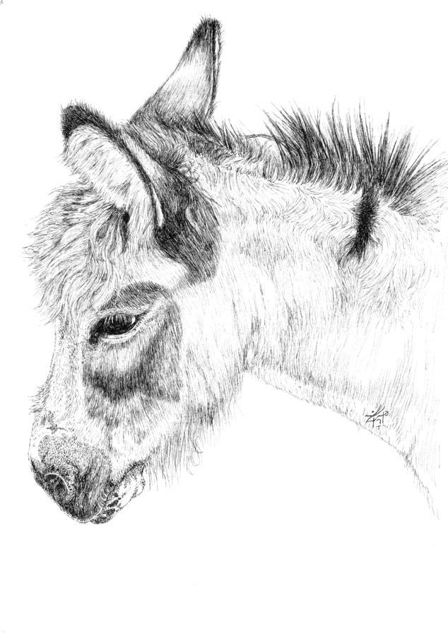Donkey 2 Painting