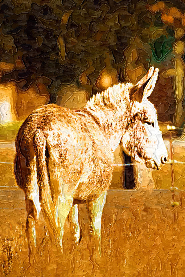 Donkey Digital Art