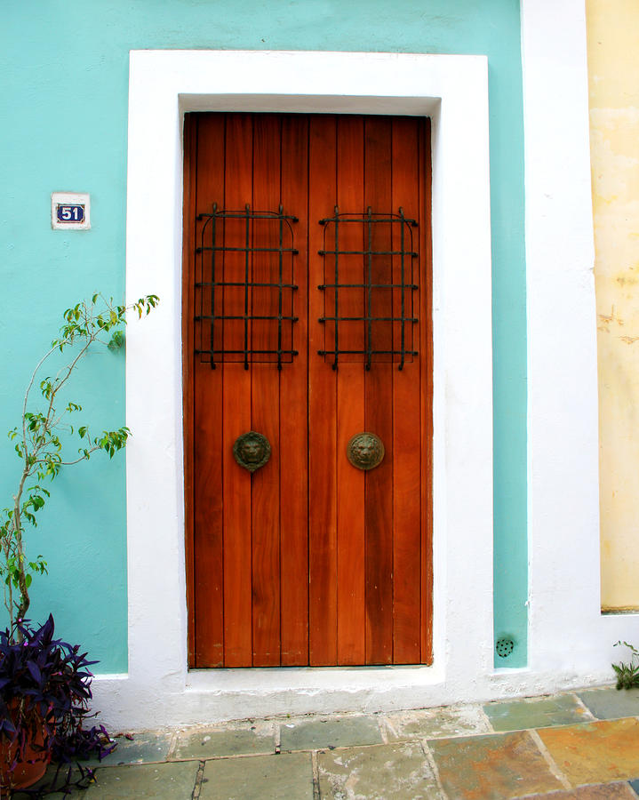 Door 51 Photograph