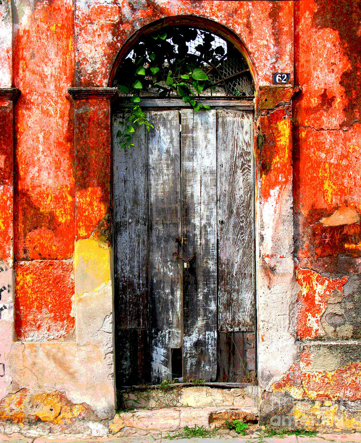 Door At The Red Corner By Darian Day Photograph  - Door At The Red Corner By Darian Day Fine Art Print