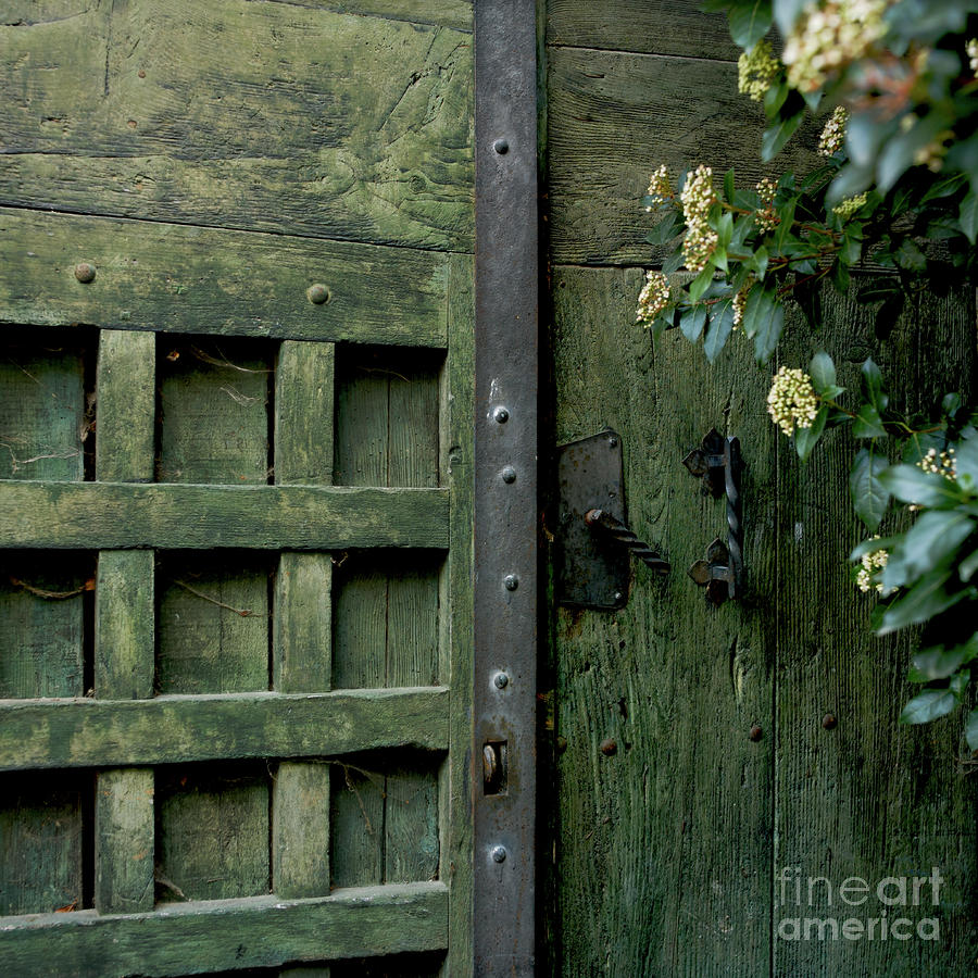 Door With Padlock Photograph