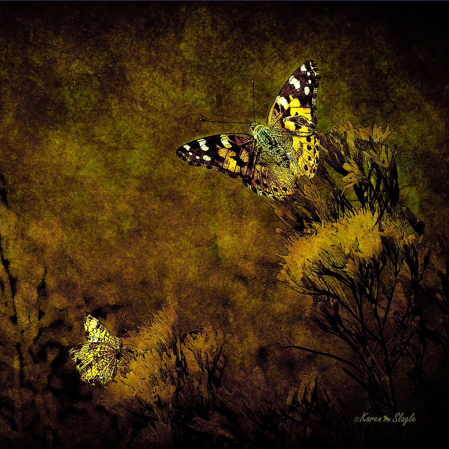 Double Delight Photograph  - Double Delight Fine Art Print