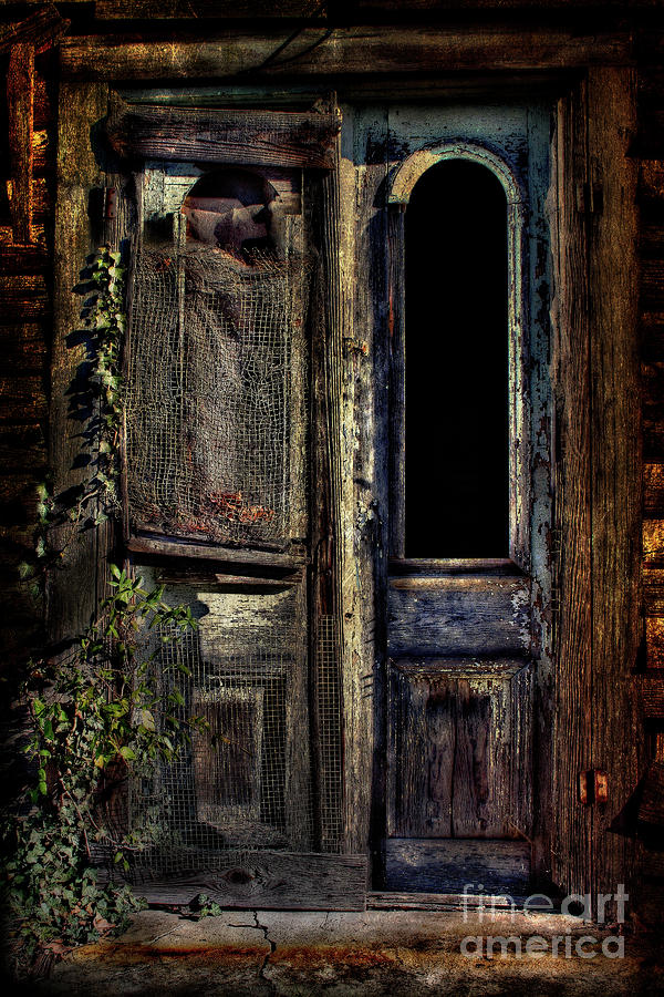 Double Door Photograph  - Double Door Fine Art Print