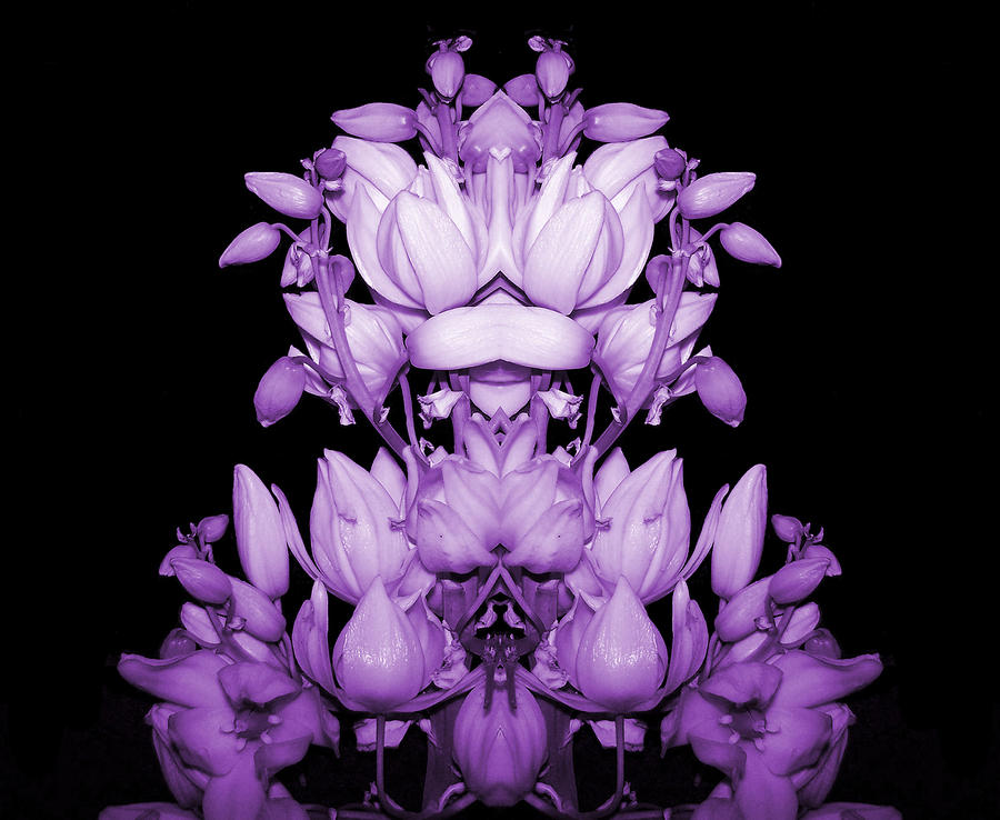 Double Purple Photograph  - Double Purple Fine Art Print