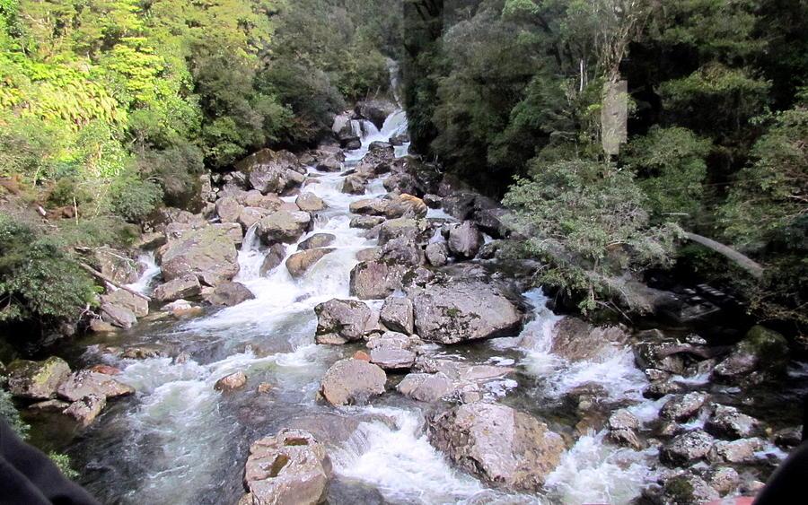 Doubtful Sound Photograph