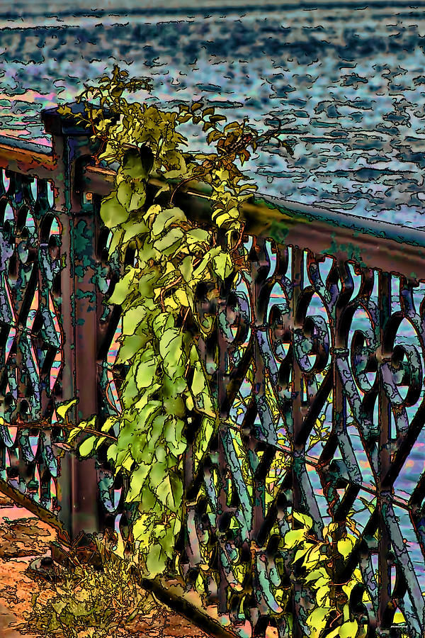 Down By The Riverside Photograph  - Down By The Riverside Fine Art Print