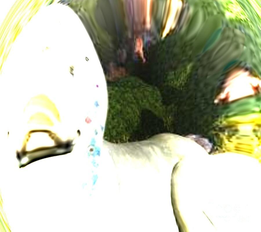 Down The Rabbit Hole Photograph