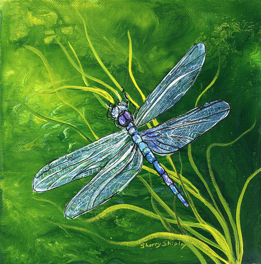 dragonfly painting by sherry shipley