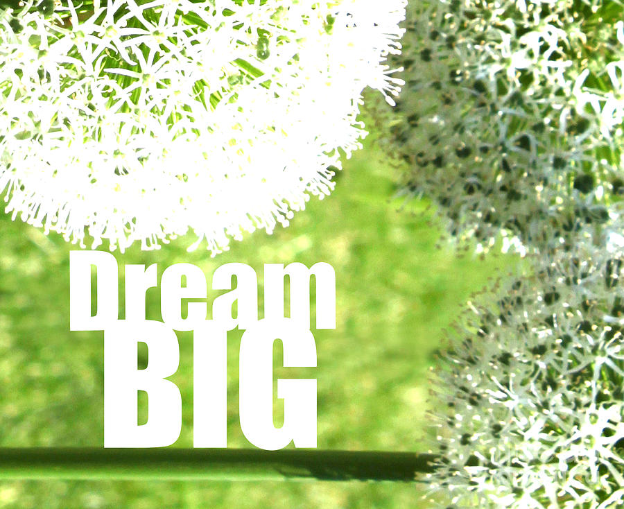 Dream Big Photograph  - Dream Big Fine Art Print