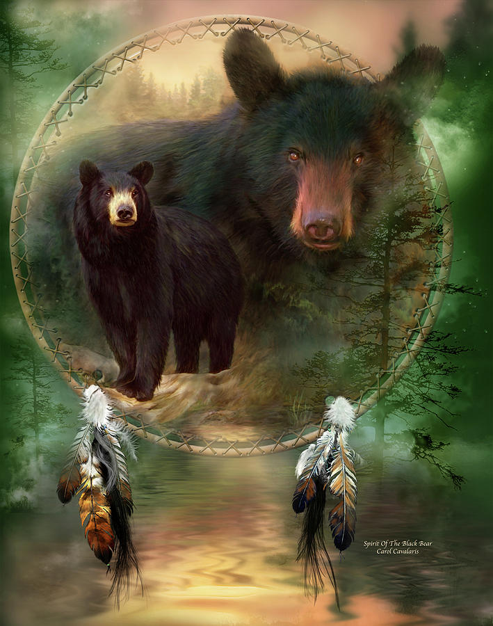 Dream Catcher - Spirit Of The Black Bear