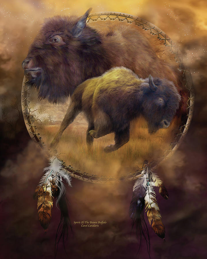 Dream Catcher - Spirit Of The Brown Buffalo Mixed Media