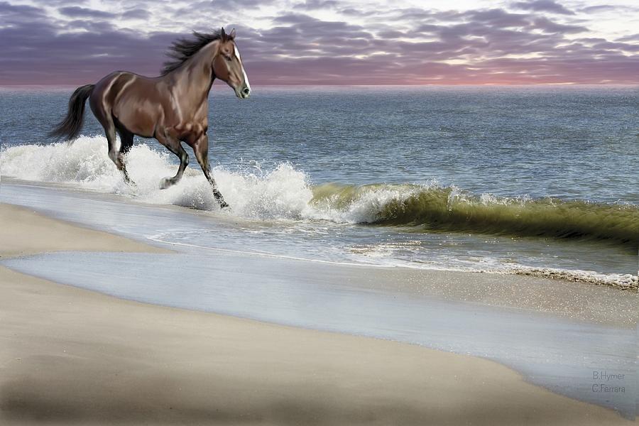 Dreamer On The Beach Photograph