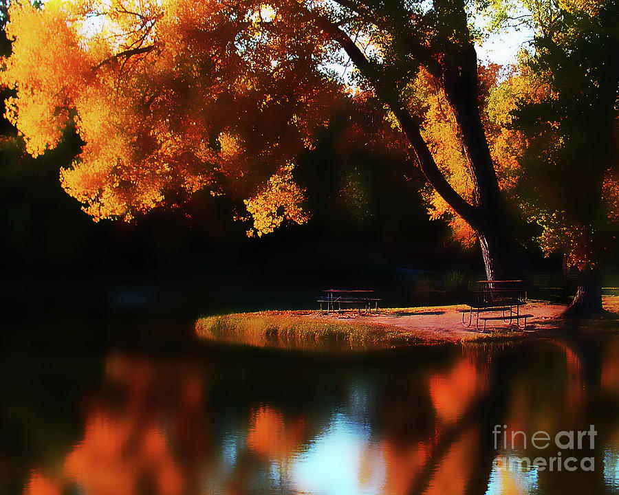 Dreamy Afternoon Photograph  - Dreamy Afternoon Fine Art Print