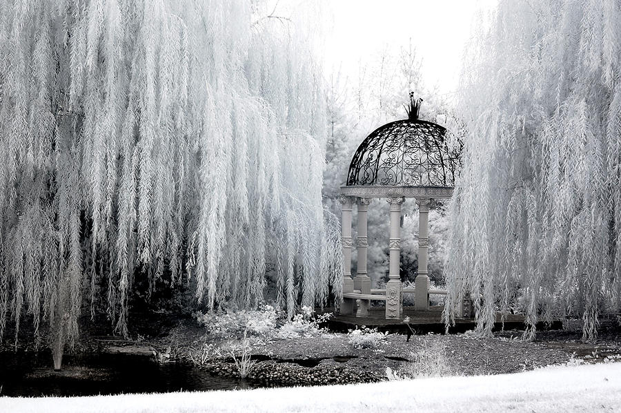 Dreamy Surreal Infrared Nature With Gazebo  Photograph  - Dreamy Surreal Infrared Nature With Gazebo  Fine Art Print