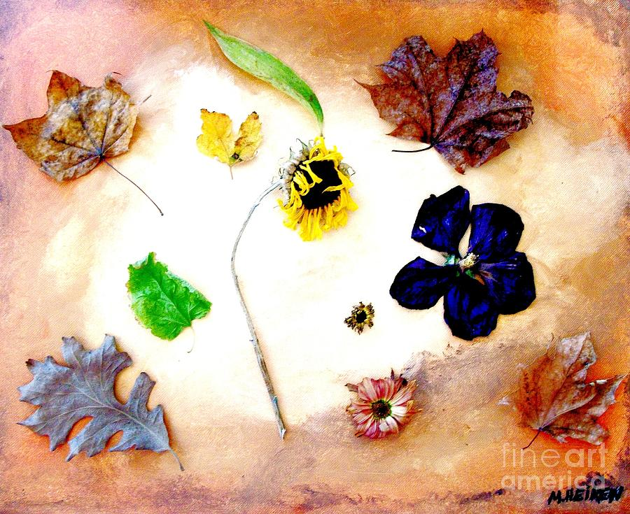Dried Flowers And Leaves Photograph