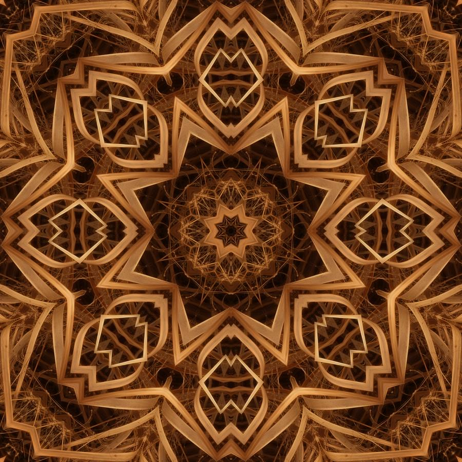 Dried Grass Mandala Digital Art  - Dried Grass Mandala Fine Art Print