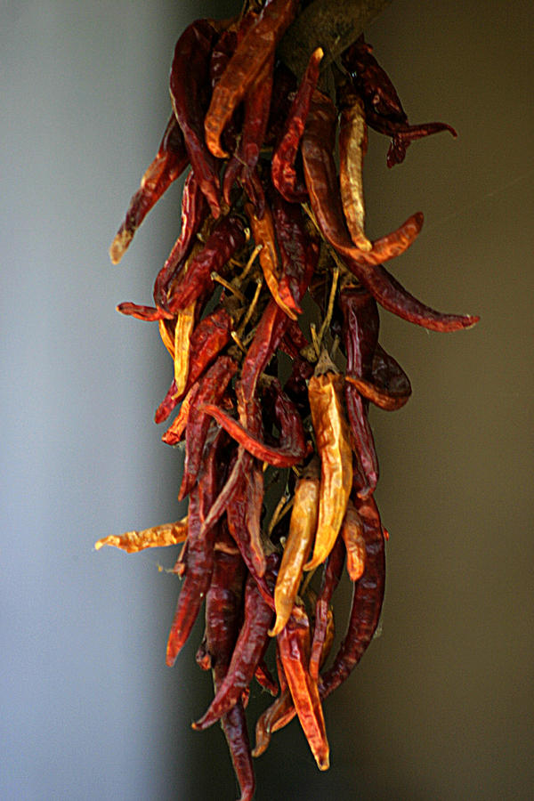 Dried Peppers Photograph