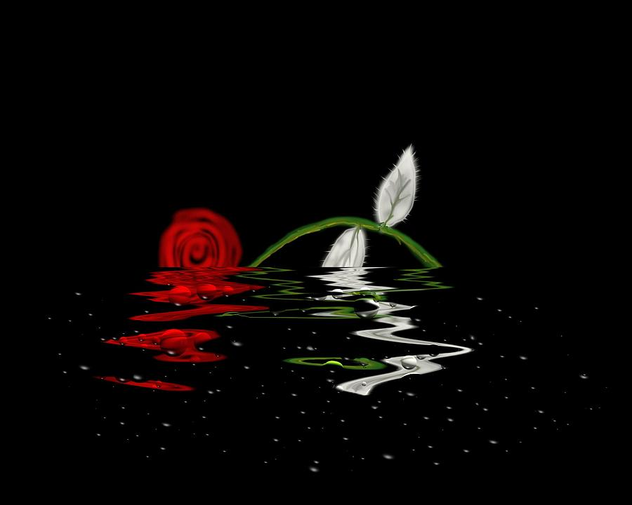 the drowned rose The drowned man by hachette  and i got a job working the rose fields there i worked with other poor folk when winter came, there was less work, so fewer of us .