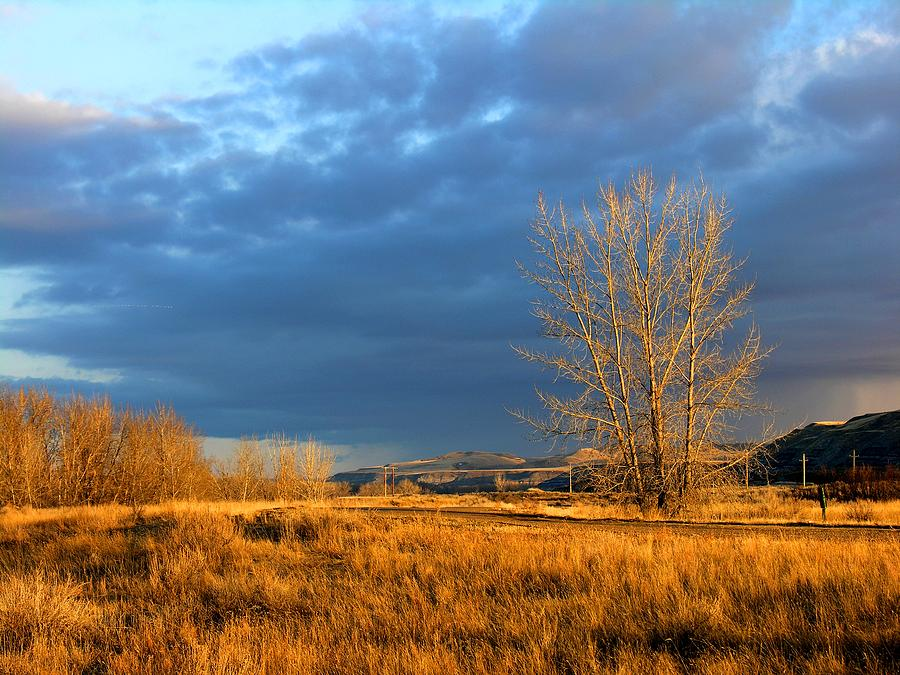 Drumheller Valley Photograph