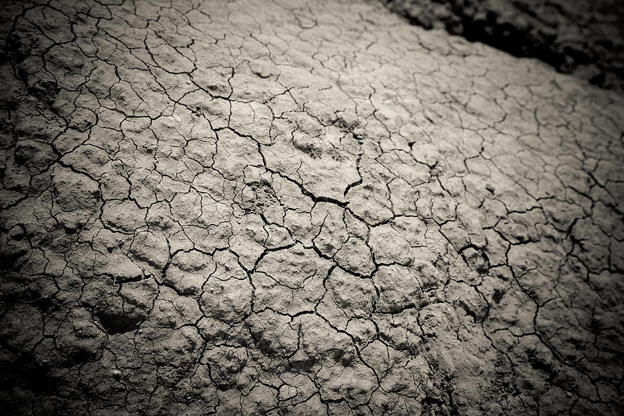 Dry And Cracking In The Badlands Photograph  - Dry And Cracking In The Badlands Fine Art Print