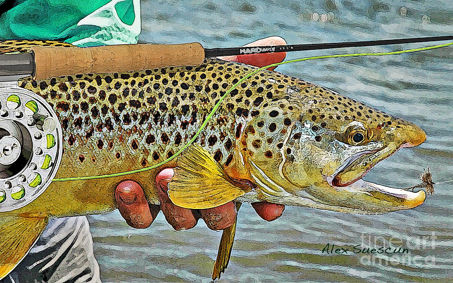 Dry Fly Brown Painting  - Dry Fly Brown Fine Art Print