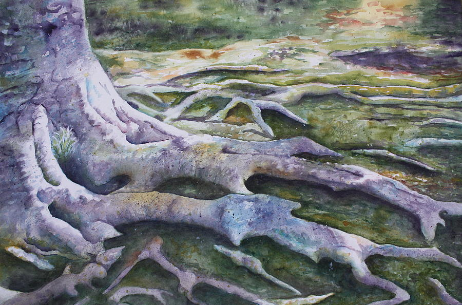 Tree Roots Painting - Dunbar Cave Roots  by Patsy Sharpe