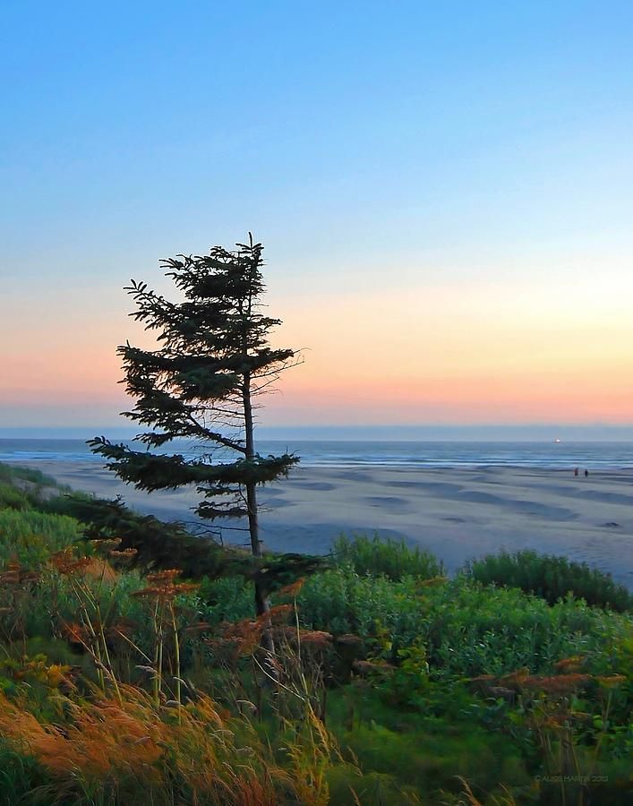 Dusk At Agate Beach Photograph