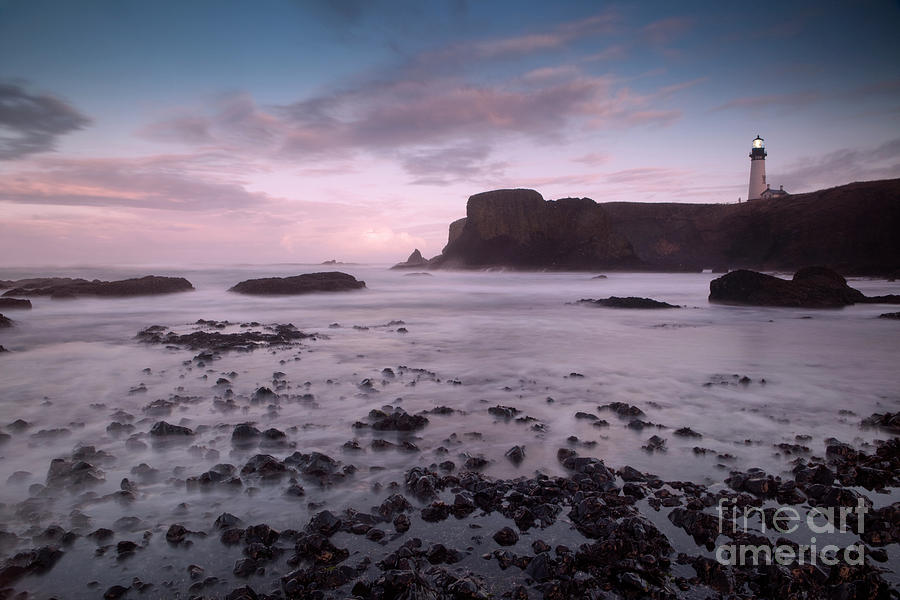 Dusk At Yaquina Head Lighthouse Photograph  - Dusk At Yaquina Head Lighthouse Fine Art Print