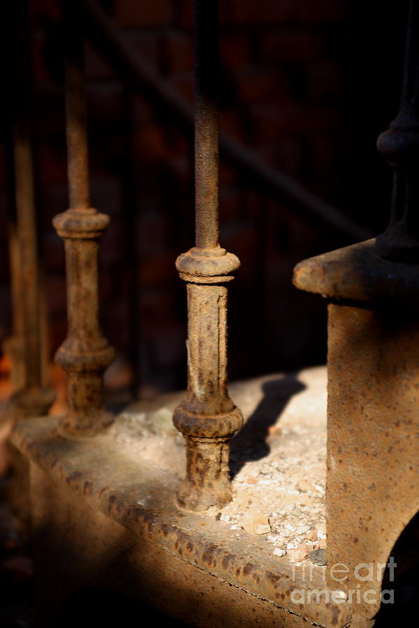 Rod Iron Photograph - Dusk Rail by Maglioli Studios