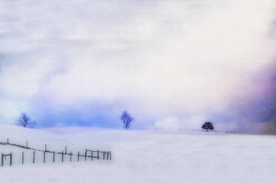 Dusky Snow Photograph
