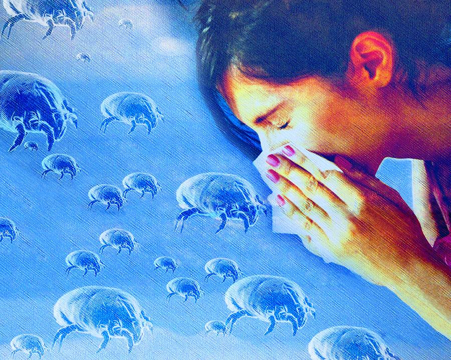 Dust Mite Allergy, Conceptual Artwork Photograph