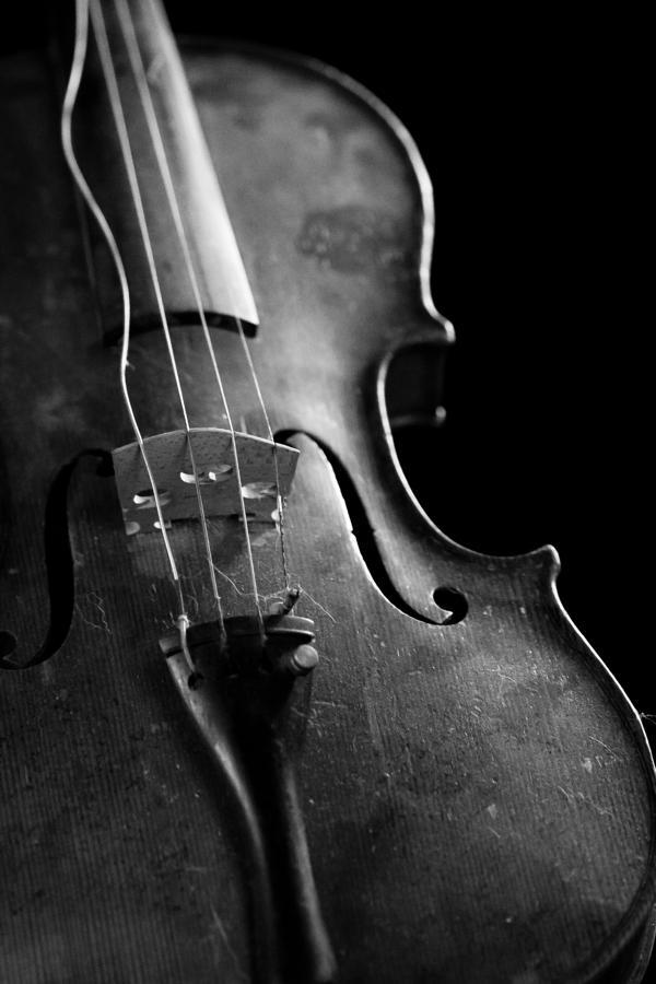dusty-violin-kacie-conaboy.jpg