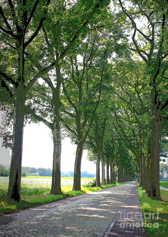 Dutch Road Photograph - Dutch Road - Digital Painting by Carol Groenen