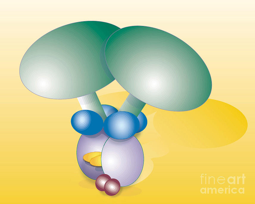 Dynein Complex Photograph