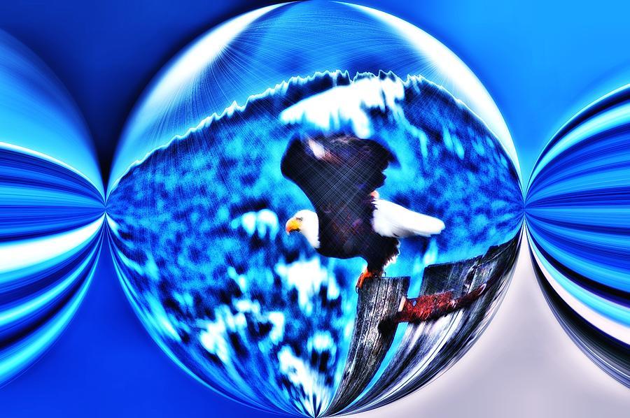 Eagle In Blue Digital Art