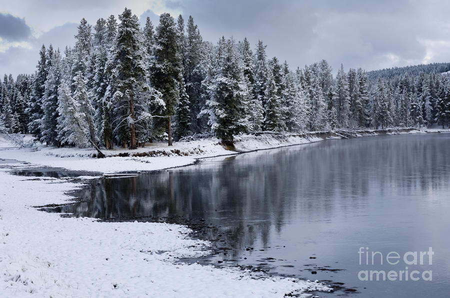 Early Fall Storm In Yellowstone Photograph  - Early Fall Storm In Yellowstone Fine Art Print