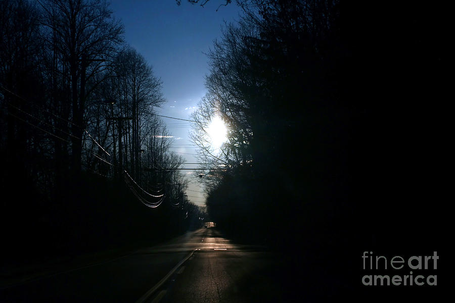 Early Morning Rural Road Photograph